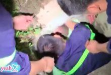 Photo of Bé trai 17 tháng tuổi bị mắc kẹt dưới cống thoát nước