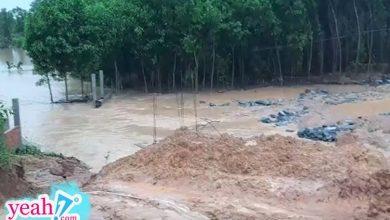 Photo of Vỡ đập thủy lợi sức chứa 800 ngàn m3 nước ở Quảng Nam