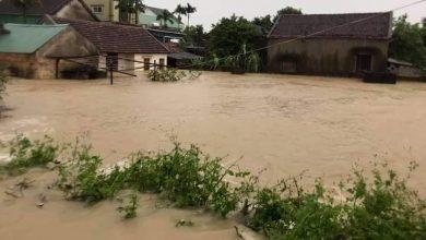Photo of Lao xuống dòng lũ cứu người, hai anh em bị nước cuốn mất tích
