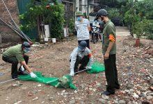 Photo of Hà Nội: Thành lập tổ phản ứng nhanh truy bắt chó thả rông nơi công cộng