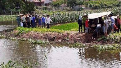 Photo of Theo mẹ và bà đi gặt lúa, hai cháu nhỏ ngã xuống ao đuối nước tử vong