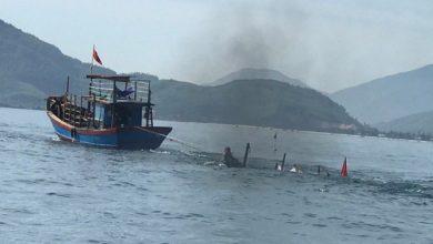 Photo of Tàu không người lái chạy lòng vòng, đôi vợ chồng ngư dân chết bất thường dưới biển