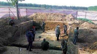 Photo of Ly kỳ chuyện 10 con cá trê 'dẫn lối' đến mộ cổ 2.000 năm tuổi: Càng đào sâu, càng kinh ngạc