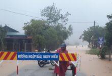 Photo of 37 người ở Thừa Thiên Huế đi rừng mất liên lạc