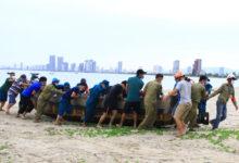 Photo of Ngư dân Đà Nẵng vừa chống dịch vừa ra sức chạy bão Côn Sơn